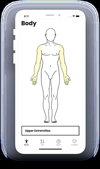 Nerve Block: Mobile Application